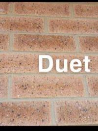 Equitoni DUET – 1 carton has 52 brick tiles (1 sqm)
