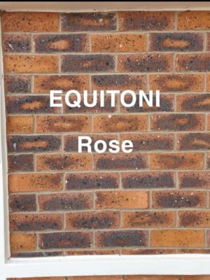 Equitoni Rose 225 x 75 x 9mm