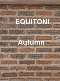 Equitoni Autumn – 1 carton has 52 brick tiles(1 sqm)